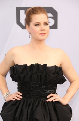 Amy Adams Wears Platinum Jewelry to the SAG Awards