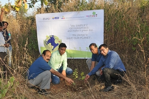 Team Allcargo plants trees in the periphery of Sitamata Wildlife Sanctuary in Rajasthan