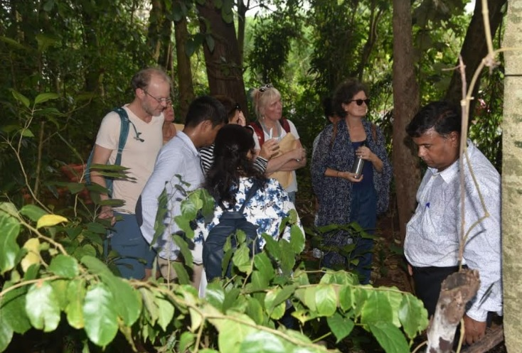 Participants learning more about Ayurveda and its properties at Ayushakti Goa